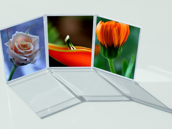 Free-standing acrylic photo frames for horizontal and vertical pictures.